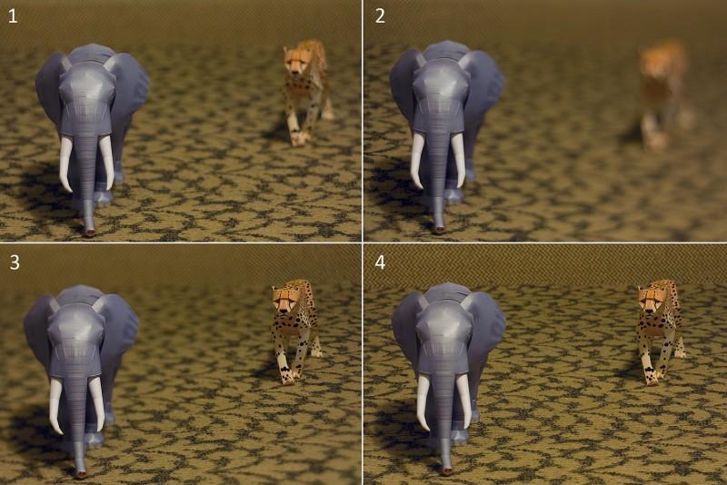 slon-gepard