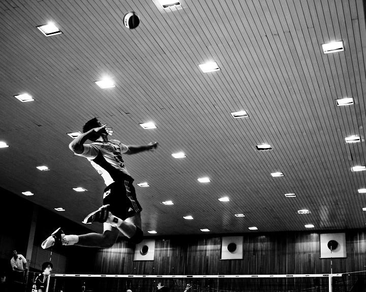 Extraligový volejbal