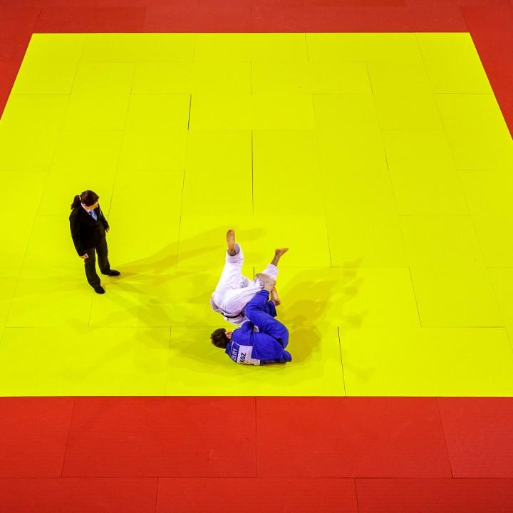 Judo in geometry