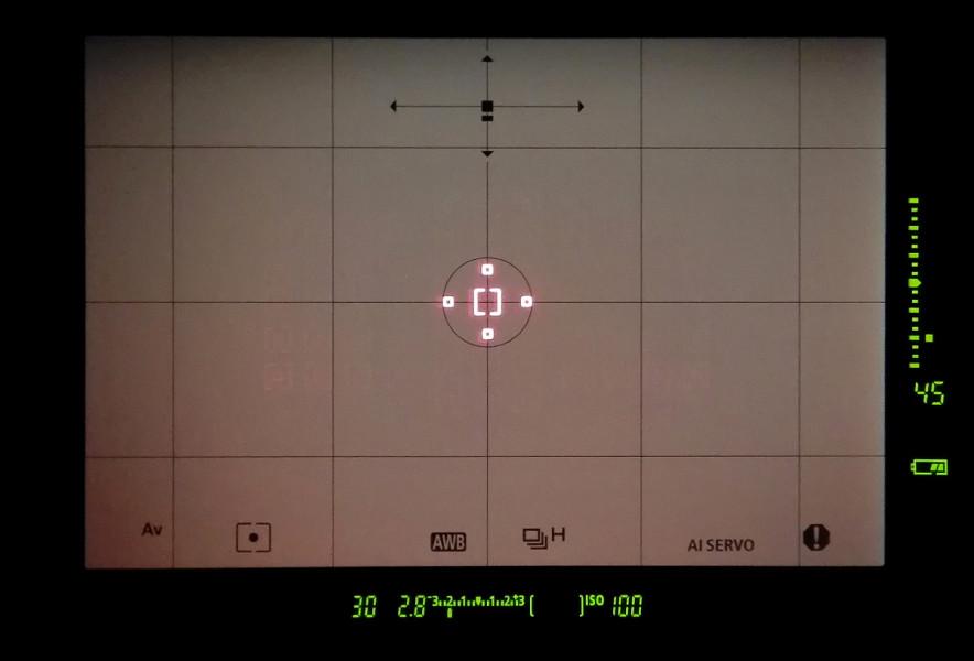Pohled do hledáčku Canonu EOS-1D X Mark OI