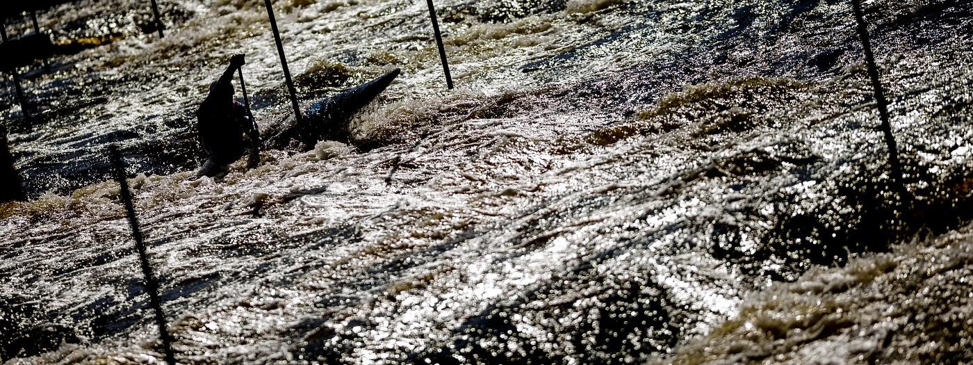 Na Českém poháru v Tróji jsme si slunce moc neužili, ale jakmile na minutu vysvitlo, hned jsem spěchal buď na lávku přes vodu nebo na protější břeh, abych mohl fotit proti slunci. Já myslím, že se to vyplatilo.