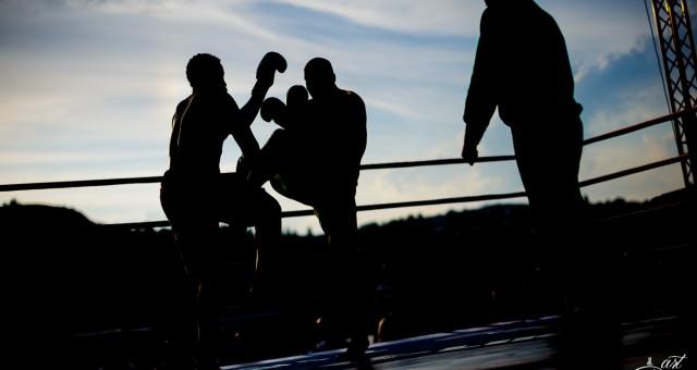 Yangames Fight Night #4